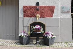 Sankt Goar am Rhein-IMG_0146